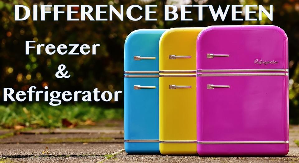 Refrigerator vs Freezer